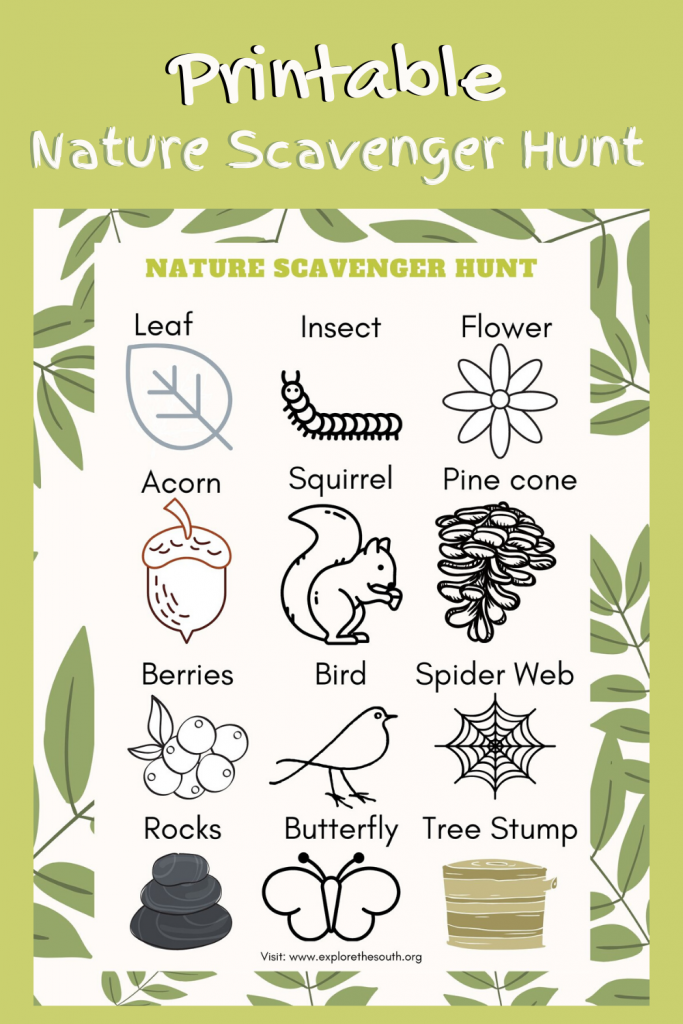 Picture of a Nature Scavenger Hunt for kids